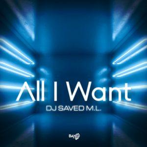 DJ SAVED M.L. – All I Want